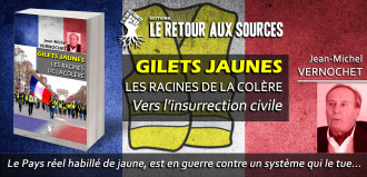 Gilets Jaunes - Les racines de la colère: L'insurrection civique